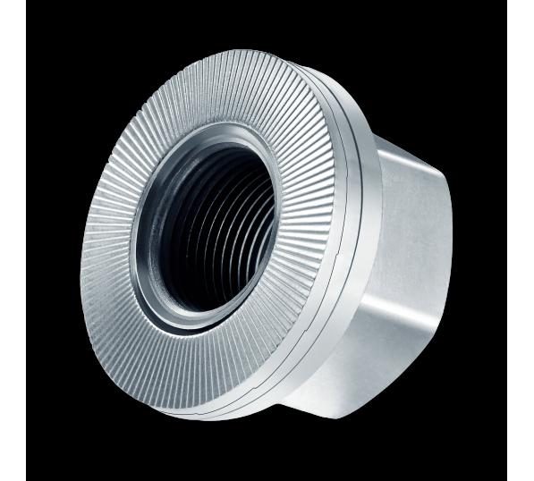 Heico-Lock borg- en wielmoer (klasse 10) staal Delta Protekt HLM-22 10 sets